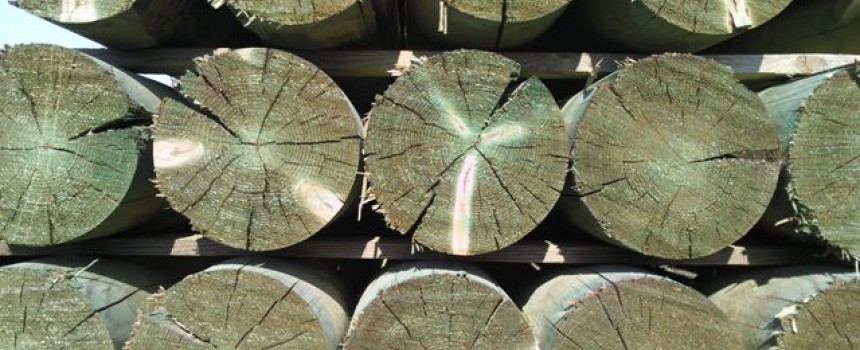 Ο εμποτισμός του ξύλου