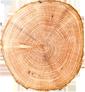 Βιοτεχνία ξύλου στο Μέτσοβο